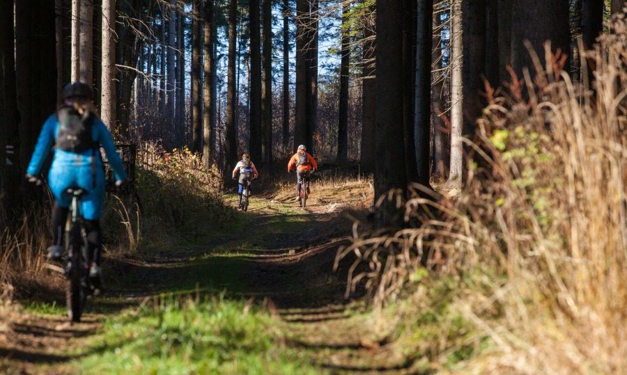 Velo 3/2016 - Velo trail guide Slaný - Džbán