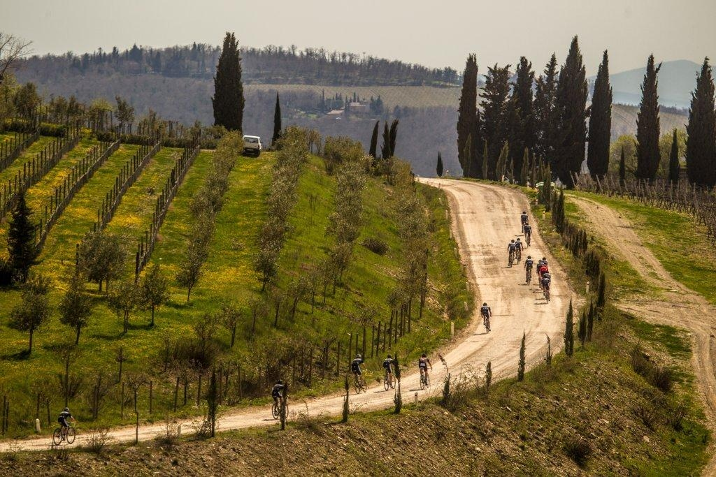 Synapse Tuscany_15 monday selection_By ADL-7173