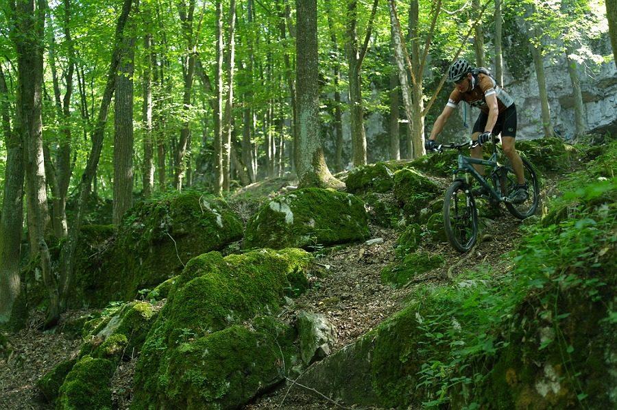 Velo 11/2012 - Trail Guide Brno