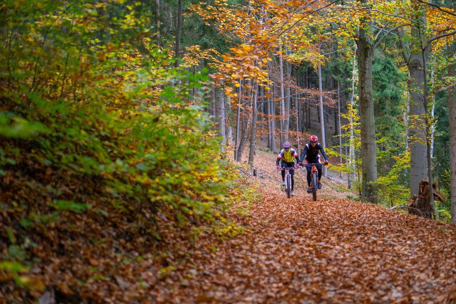 Velo 2/2019 - Velo trail guide, Krušné hory, den 2. - GPX