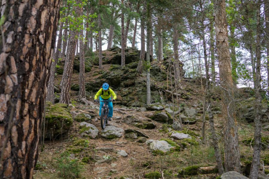 Velo 11/2018 - Velo trail guide - Sušice - GPX